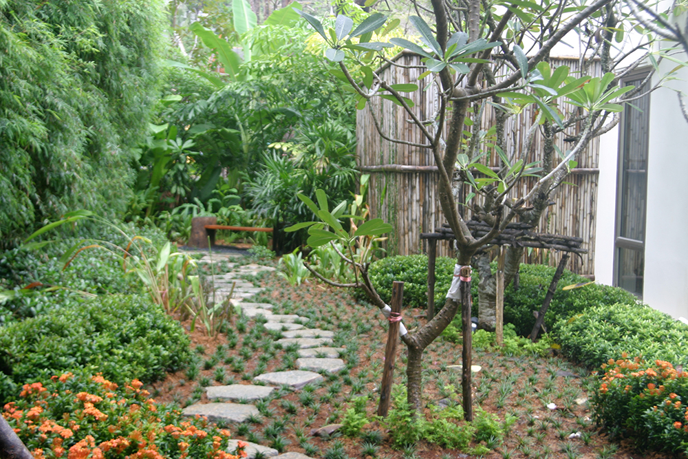 courtyard garden in thailand