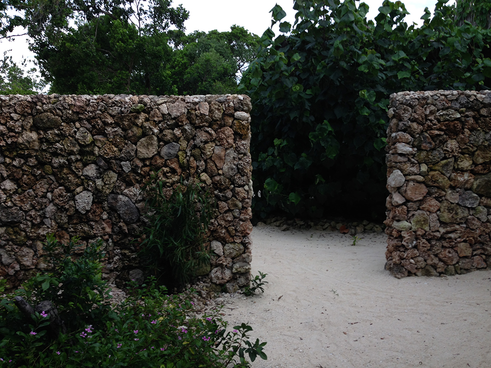 coral wall on Vamizi island