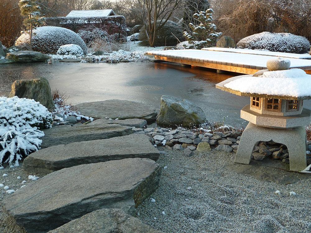 Winter am Koiteich