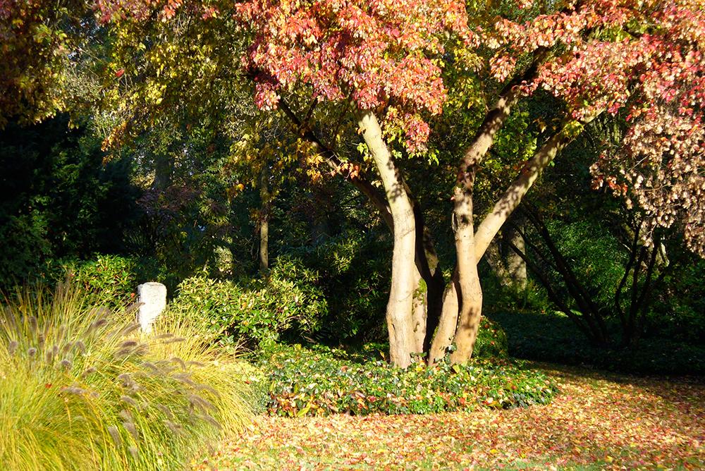 japanischer Garten bei Nürnberg