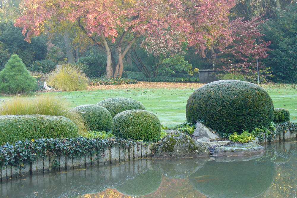 geschnittene Büsche im japanischen Garten
