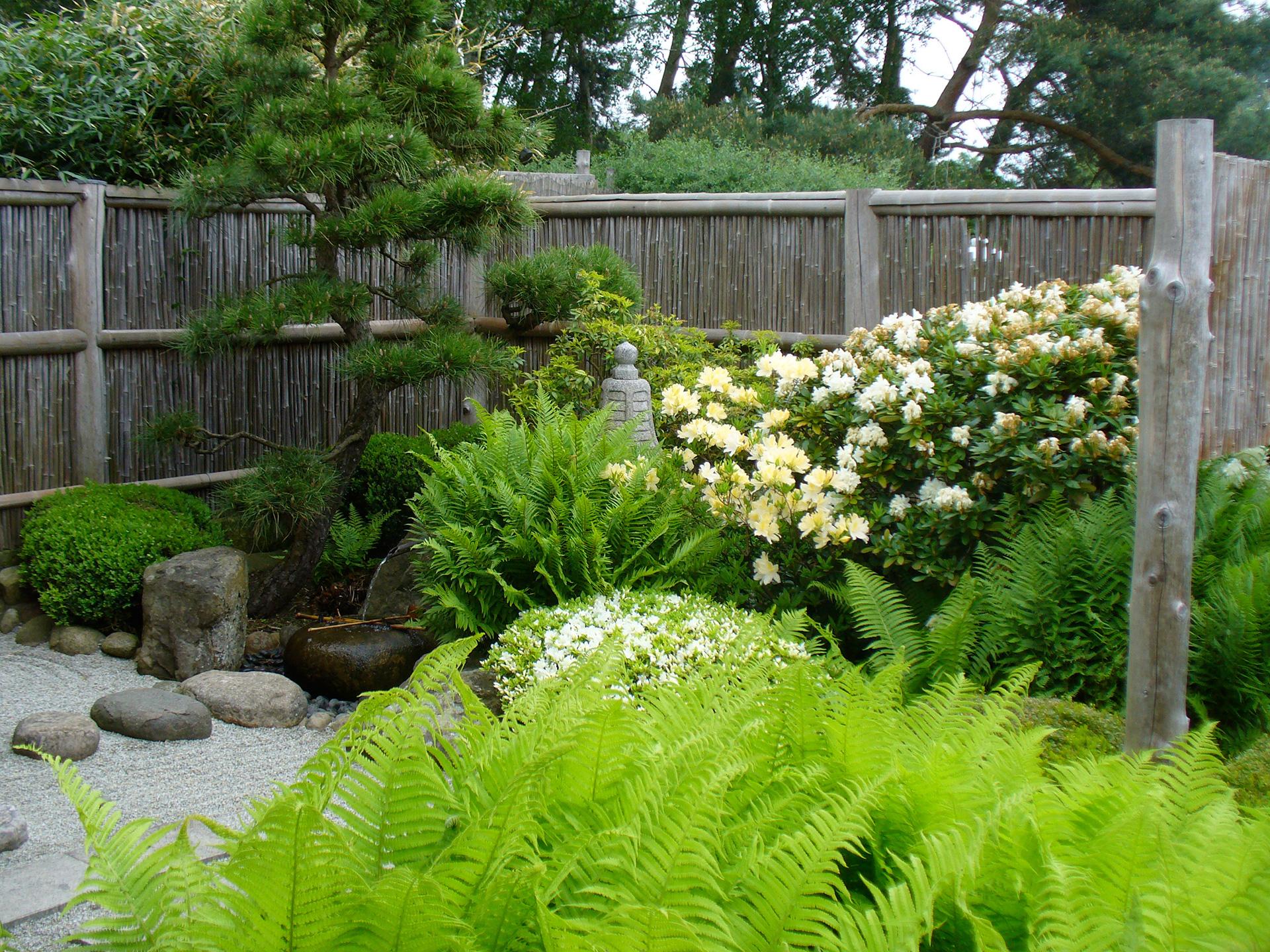Top ROJI Japanische Gärten | Roji japanische Gärten, japanischer #FV_31
