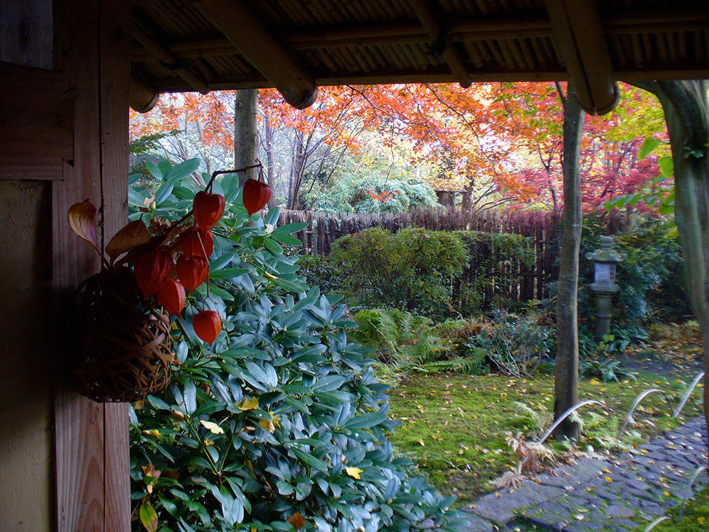 Blick aus der Wartebank im Teegarten