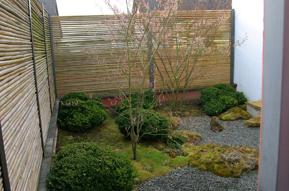 kleiner, japanischer Hofgarten