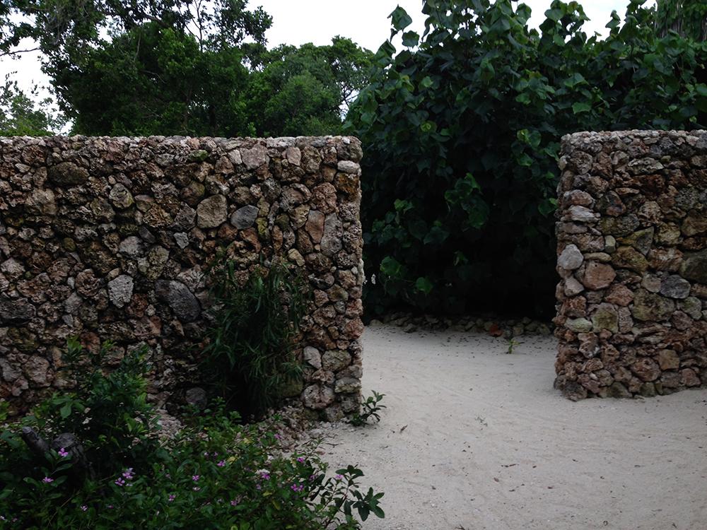 coral wall on Vamizi island
