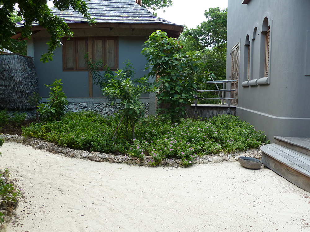 garden in mosambique