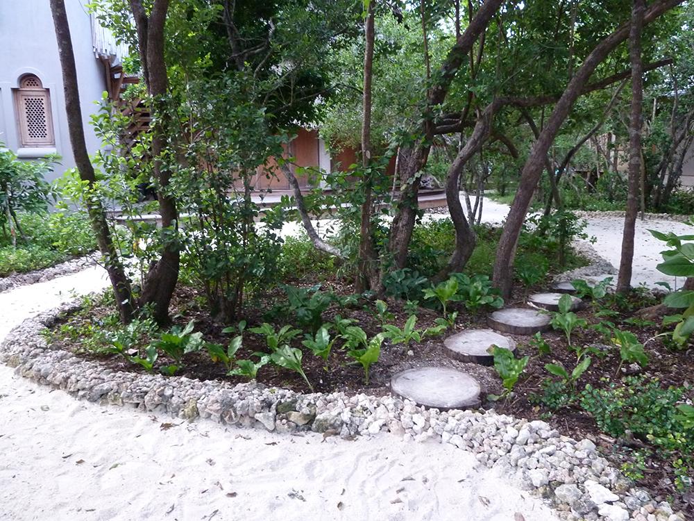 garden at luxury villa in mosambique