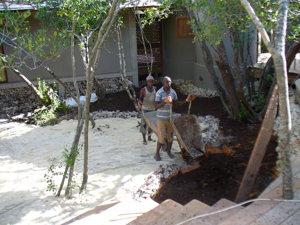 garden in Mozambique
