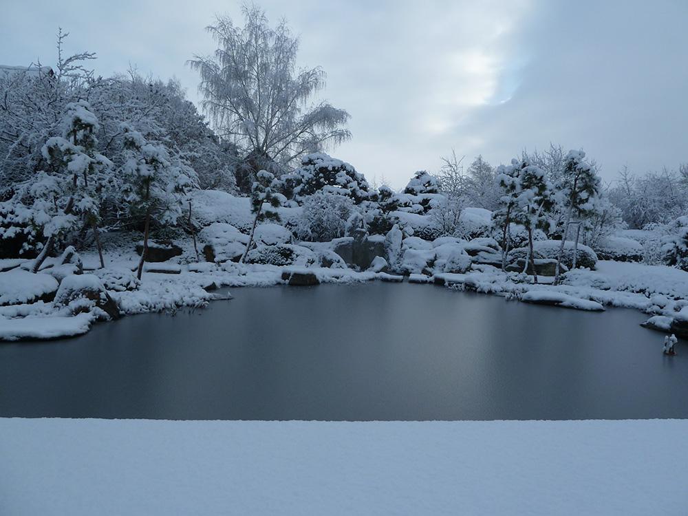 Winter am japanischen Teich