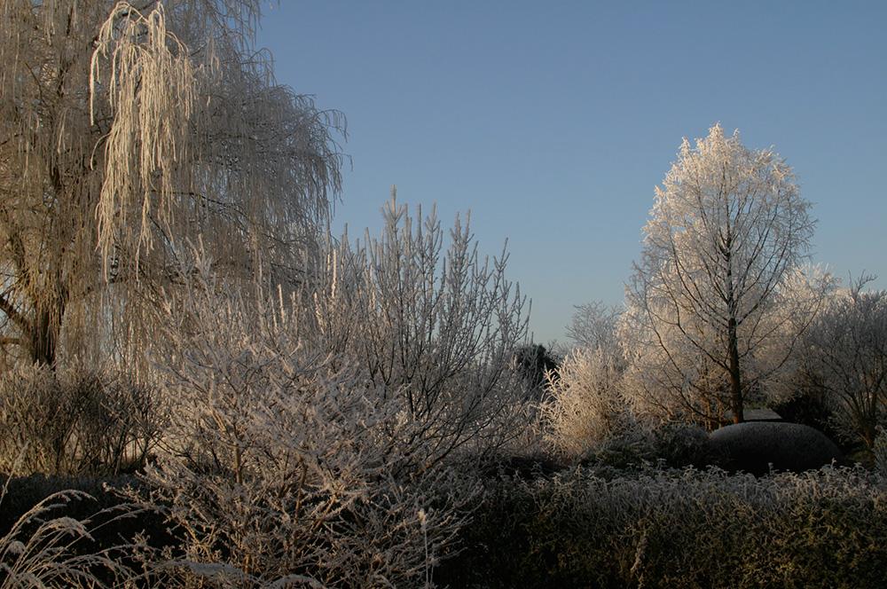 japanischer Garten im Bartschendorf im Winter