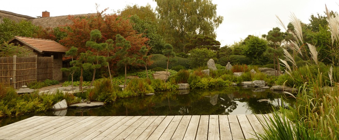 Herbstverfärbung am Koiteich